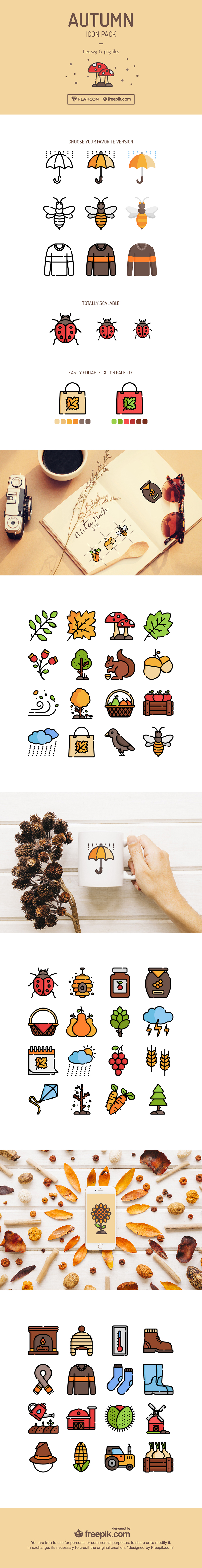 Autumn Icon Pack Design